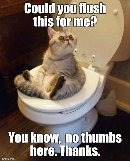 Could you flush this for me? You know,  no thumbs here. Thanks. | made w/ Imgflip meme maker