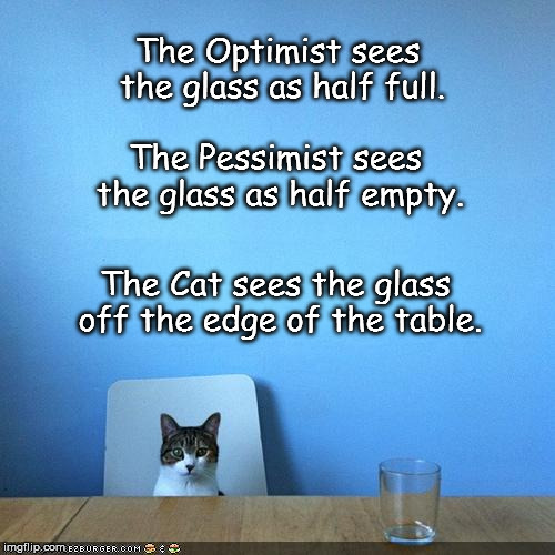The Optimist sees the glass as half full. The Cat sees the glass off the edge of the table. The Pessimist sees the glass as half empty. | image tagged in cat,glass,edge of table,optimist,pessimist | made w/ Imgflip meme maker