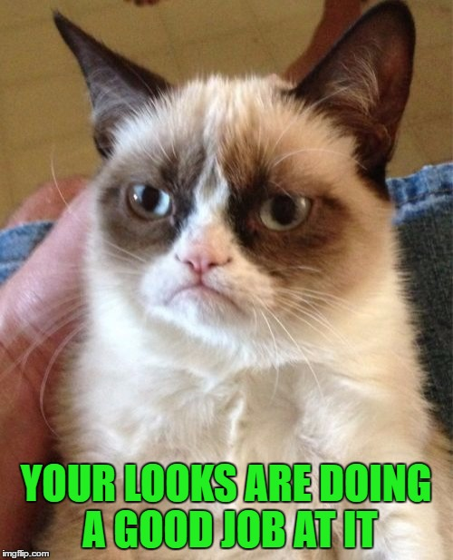 Grumpy Cat Meme | YOUR LOOKS ARE DOING A GOOD JOB AT IT | image tagged in memes,grumpy cat | made w/ Imgflip meme maker