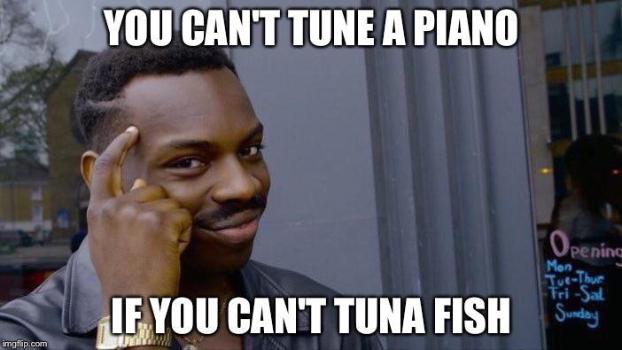 Roll Safe Think About It Meme | YOU CAN'T TUNE A PIANO IF YOU CAN'T TUNA FISH | image tagged in roll safe think about it | made w/ Imgflip meme maker