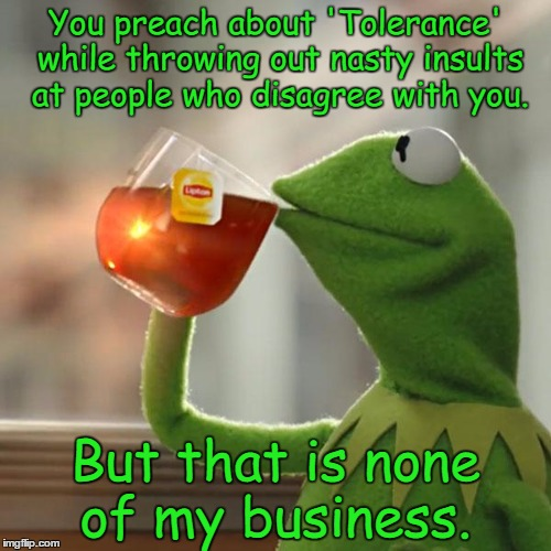 But Thats None Of My Business Meme | You preach about 'Tolerance' while throwing out nasty insults at people who disagree with you. But that is none of my business. | image tagged in memes,but thats none of my business,kermit the frog | made w/ Imgflip meme maker