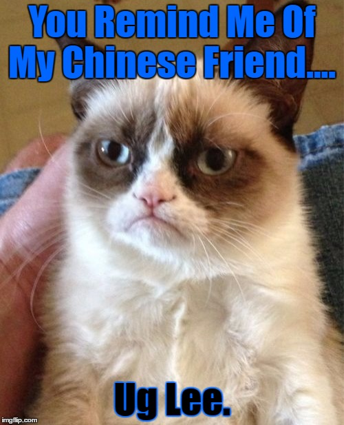 Grumpy Cat Meme | You Remind Me Of My Chinese Friend.... Ug Lee. | image tagged in memes,grumpy cat,google images,grumpy cat insults,chinese name,craziness_all_the_way | made w/ Imgflip meme maker