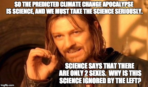 One Does Not Simply Meme | SO THE PREDICTED CLIMATE CHANGE APOCALYPSE IS SCIENCE, AND WE MUST TAKE THE SCIENCE SERIOUSLY. SCIENCE SAYS THAT THERE ARE ONLY 2 SEXES.  WH | image tagged in memes,one does not simply | made w/ Imgflip meme maker