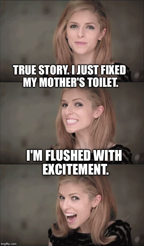 Bad Pun Anna Kendrick Meme | TRUE STORY. I JUST FIXED MY MOTHER'S TOILET. I'M FLUSHED WITH EXCITEMENT. | image tagged in memes,bad pun anna kendrick | made w/ Imgflip meme maker