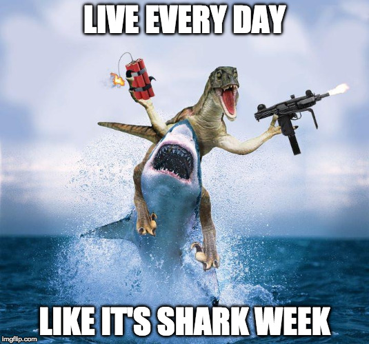 Words to live (or die) by. | LIVE EVERY DAY LIKE IT'S SHARK WEEK | image tagged in raptor riding shark,shark week,live,life | made w/ Imgflip meme maker