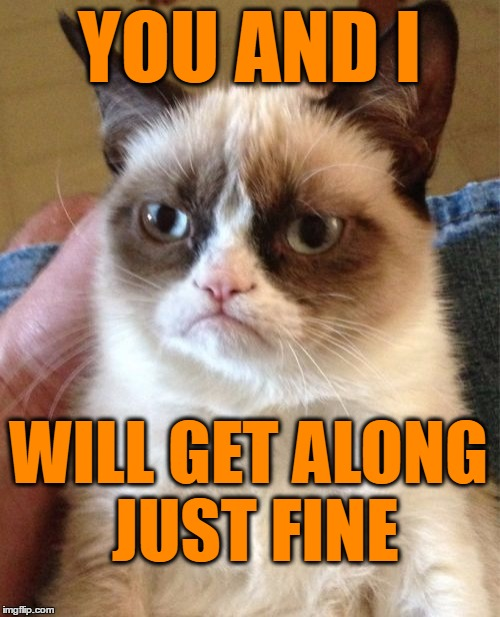 Grumpy Cat Meme | YOU AND I WILL GET ALONG JUST FINE | image tagged in memes,grumpy cat | made w/ Imgflip meme maker