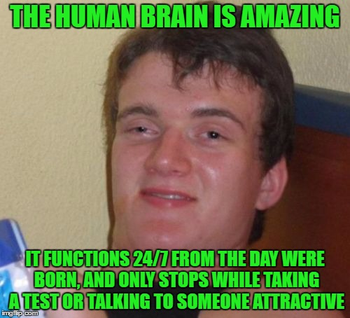Note: doesn't apply to many people. | THE HUMAN BRAIN IS AMAZING IT FUNCTIONS 24/7 FROM THE DAY WERE BORN, AND ONLY STOPS WHILE TAKING A TEST OR TALKING TO SOMEONE ATTRACTIVE | image tagged in memes,10 guy | made w/ Imgflip meme maker