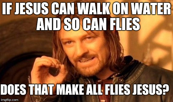 One Does Not Simply Meme | IF JESUS CAN WALK ON WATER AND SO CAN FLIES DOES THAT MAKE ALL FLIES JESUS? | image tagged in memes,one does not simply | made w/ Imgflip meme maker