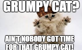 GRUMPY CAT? AIN'T NOBODY GOT TIME FOR THAT GRUMPY CAT! | image tagged in ain't nobody got time for grumpy cat,scumbag | made w/ Imgflip meme maker