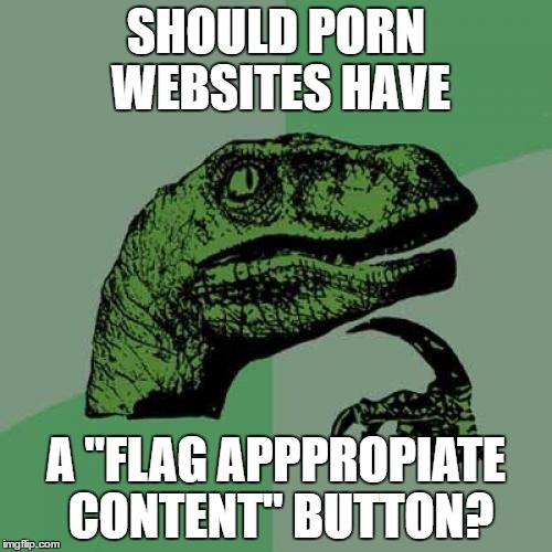 "SFW? | SHOULD PORN WEBSITES HAVE A ""FLAG APPPROPIATE CONTENT"" BUTTON? 