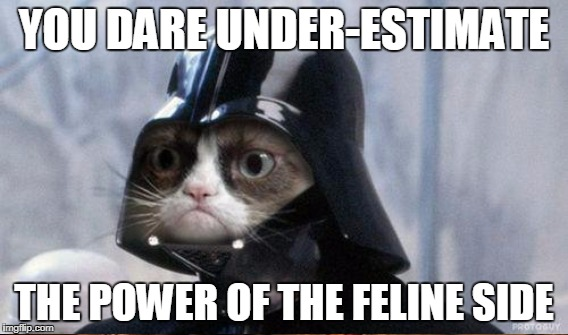 YOU DARE UNDER-ESTIMATE THE POWER OF THE FELINE SIDE | made w/ Imgflip meme maker