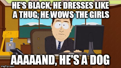 Aaaaand Its Gone Meme | HE'S BLACK, HE DRESSES LIKE A THUG, HE WOWS THE GIRLS AAAAAND, HE'S A DOG | image tagged in memes,aaaaand its gone | made w/ Imgflip meme maker