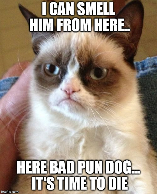 Grumpy Cat Meme | I CAN SMELL HIM FROM HERE.. HERE BAD PUN DOG... IT'S TIME TO DIE | image tagged in memes,grumpy cat | made w/ Imgflip meme maker