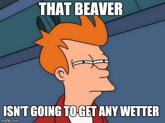 Futurama Fry Meme | THAT BEAVER ISN'T GOING TO GET ANY WETTER | image tagged in memes,futurama fry | made w/ Imgflip meme maker
