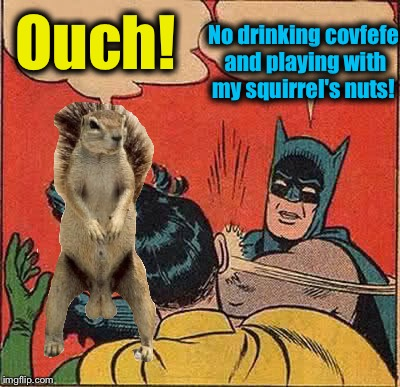 Ouch! No drinking covfefe and playing with my squirrel's nuts! | made w/ Imgflip meme maker