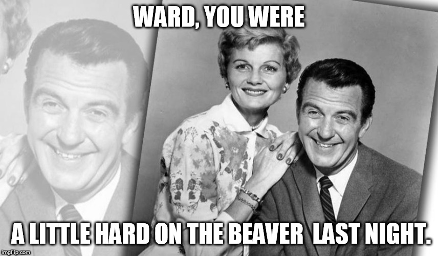 WARD, YOU WERE A LITTLE HARD ON THE BEAVER  LAST NIGHT. | made w/ Imgflip meme maker