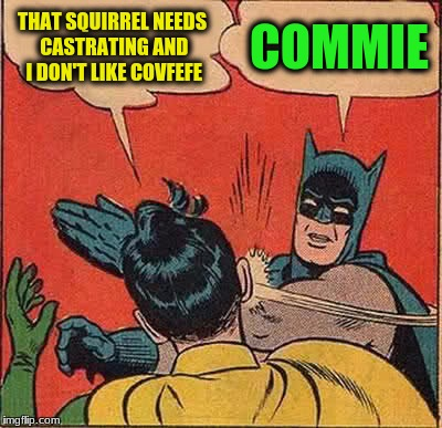Batman Slapping Robin Meme | THAT SQUIRREL NEEDS CASTRATING AND I DON'T LIKE COVFEFE COMMIE | image tagged in memes,batman slapping robin | made w/ Imgflip meme maker