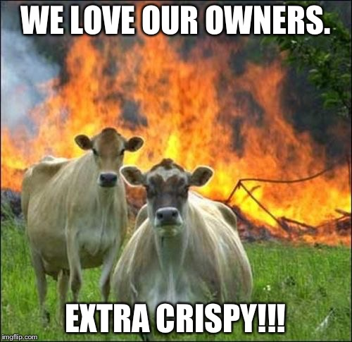 Evil Cows Meme | WE LOVE OUR OWNERS. EXTRA CRISPY!!! | image tagged in memes,evil cows | made w/ Imgflip meme maker