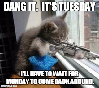 CatSniper | DANG IT,  IT'S TUESDAY I'LL HAVE TO WAIT FOR MONDAY TO COME BACK AROUND. | image tagged in catsniper | made w/ Imgflip meme maker