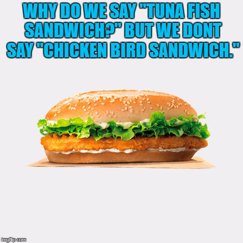 "WHY DO WE SAY ""TUNA FISH SANDWICH?"" BUT WE DONT SAY ""CHICKEN BIRD SANDWICH."" 