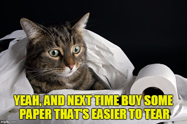 YEAH, AND NEXT TIME BUY SOME PAPER THAT'S EASIER TO TEAR | made w/ Imgflip meme maker
