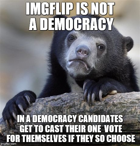 Confession Bear Meme | IMGFLIP IS NOT A DEMOCRACY IN A DEMOCRACY CANDIDATES GET TO CAST THEIR ONE  VOTE FOR THEMSELVES IF THEY SO CHOOSE | image tagged in memes,confession bear | made w/ Imgflip meme maker