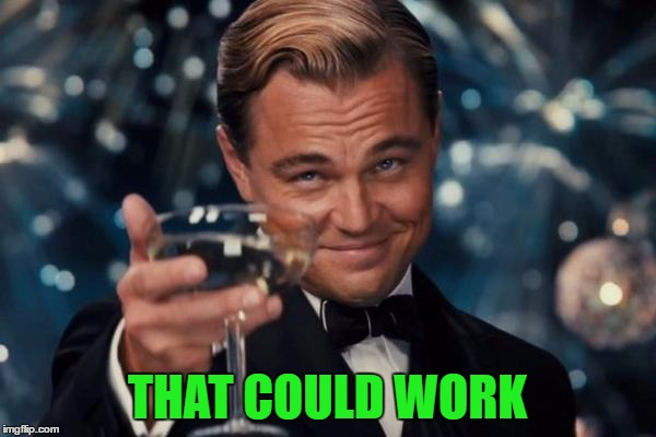 Leonardo Dicaprio Cheers Meme | THAT COULD WORK | image tagged in memes,leonardo dicaprio cheers | made w/ Imgflip meme maker