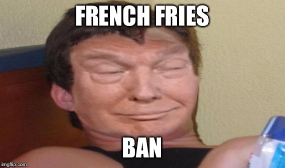 FRENCH FRIES BAN | made w/ Imgflip meme maker