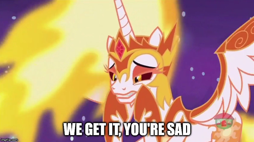 When someone shitposts obnoxiously | WE GET IT, YOU'RE SAD | image tagged in mlp,shitpost,sad,mlp meme,mlp fim | made w/ Imgflip meme maker