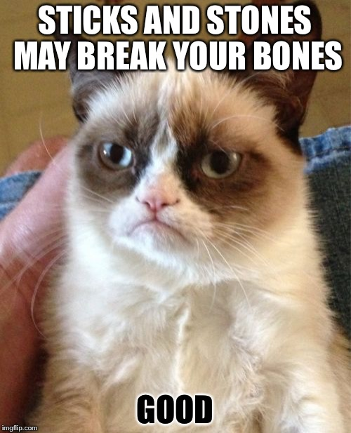 Grumpy Cat Meme | STICKS AND STONES MAY BREAK YOUR BONES GOOD | image tagged in memes,grumpy cat | made w/ Imgflip meme maker