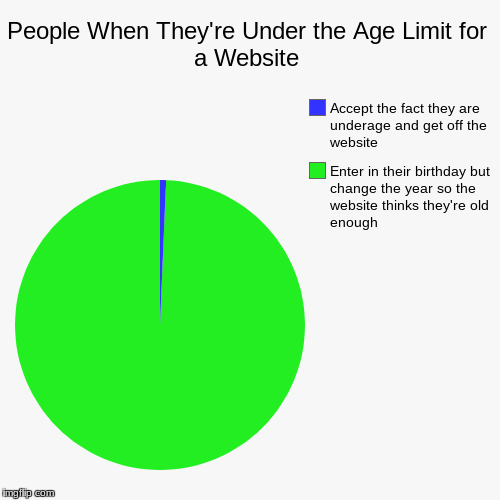 People When They're Under the Age Limit for a Website | Enter in their birthday but change the year so the website thinks they're old enough | image tagged in funny,pie charts | made w/ Imgflip pie chart maker