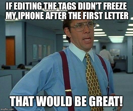 That Would Be Great Meme | IF EDITING THE TAGS DIDN'T FREEZE MY IPHONE AFTER THE FIRST LETTER THAT WOULD BE GREAT! | image tagged in memes,that would be great | made w/ Imgflip meme maker