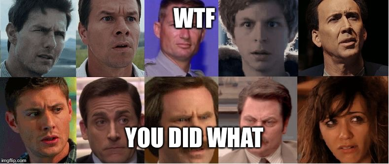 WTF YOU DID WHAT | image tagged in the look | made w/ Imgflip meme maker