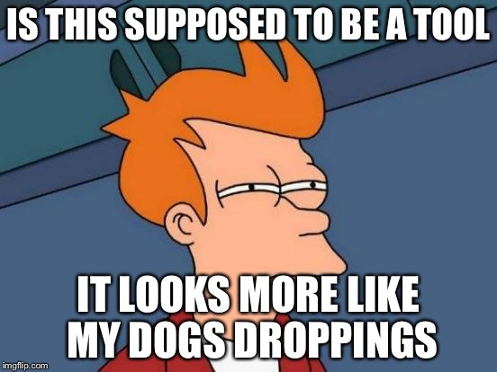 IS THIS SUPPOSED TO BE A TOOL IT LOOKS MORE LIKE MY DOGS DROPPINGS | image tagged in memes,futurama fry | made w/ Imgflip meme maker