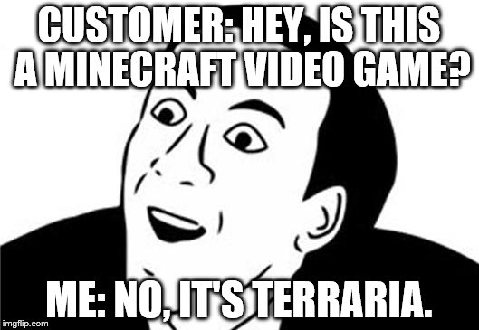 You Don't Say? | CUSTOMER: HEY, IS THIS A MINECRAFT VIDEO GAME? ME: NO, IT'S TERRARIA. | image tagged in you don't say | made w/ Imgflip meme maker