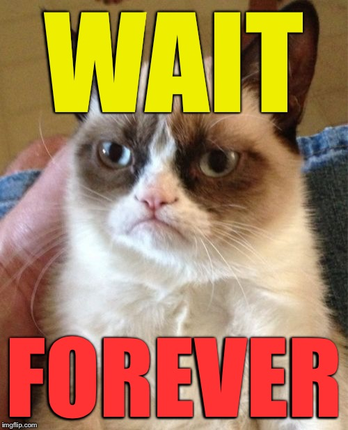 Grumpy Cat Meme | WAIT FOREVER | image tagged in memes,grumpy cat | made w/ Imgflip meme maker