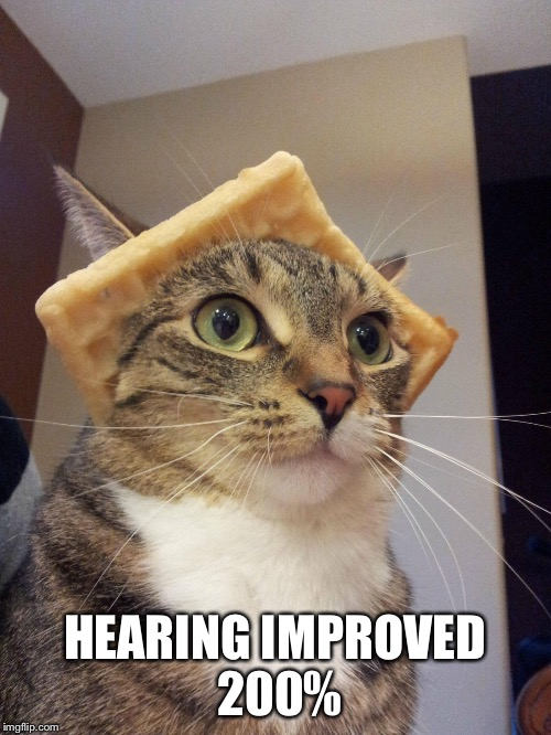 HEARING IMPROVED 200% | made w/ Imgflip meme maker