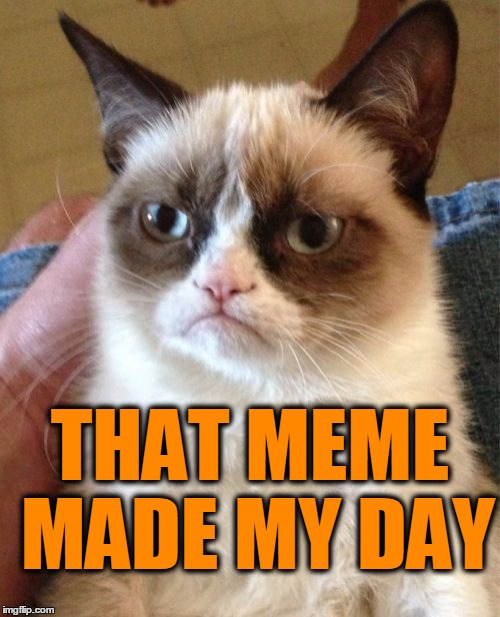 Grumpy Cat Meme | THAT MEME MADE MY DAY | image tagged in memes,grumpy cat | made w/ Imgflip meme maker