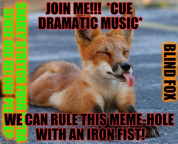 JOIN ME!!!  *CUE DRAMATIC MUSIC* WE CAN RULE THIS MEME-HOLE WITH AN IRON FIST! | made w/ Imgflip meme maker