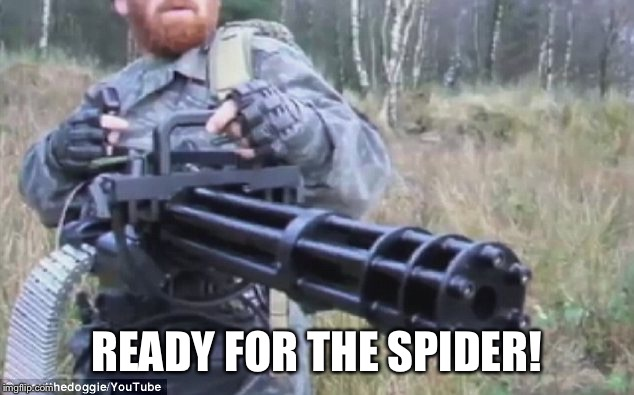 READY FOR THE SPIDER! | made w/ Imgflip meme maker