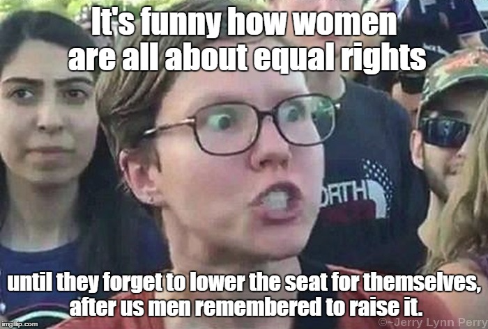 You want equal rights? Yeah right... | It's funny how women are all about equal rights until they forget to lower the seat for themselves, after us men remembered to raise it. | image tagged in triggered liberal,gender equality | made w/ Imgflip meme maker