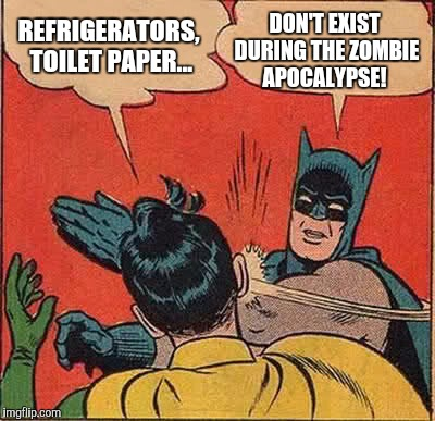 Batman Slapping Robin Meme | REFRIGERATORS, TOILET PAPER... DON'T EXIST DURING THE ZOMBIE APOCALYPSE! | image tagged in memes,batman slapping robin | made w/ Imgflip meme maker