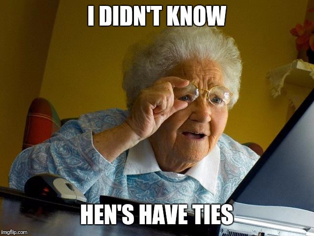 Grandma Finds The Internet Meme | I DIDN'T KNOW HEN'S HAVE TIES | image tagged in memes,grandma finds the internet | made w/ Imgflip meme maker