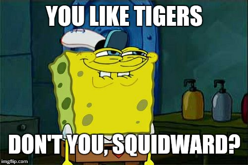 Dont You Squidward Meme | YOU LIKE TIGERS DON'T YOU, SQUIDWARD? | image tagged in memes,dont you squidward | made w/ Imgflip meme maker