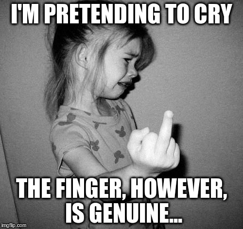 little girl crying | I'M PRETENDING TO CRY THE FINGER, HOWEVER, IS GENUINE... | image tagged in little girl crying | made w/ Imgflip meme maker