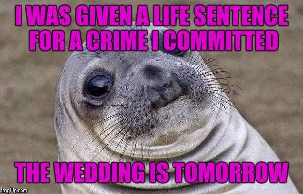 Awkward Moment Sealion Meme | I WAS GIVEN A LIFE SENTENCE FOR A CRIME I COMMITTED THE WEDDING IS TOMORROW | image tagged in memes,awkward moment sealion | made w/ Imgflip meme maker