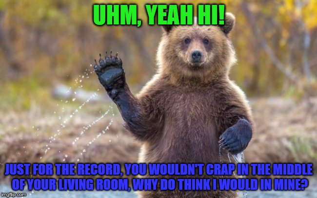 UHM, YEAH HI! JUST FOR THE RECORD, YOU WOULDN'T CRAP IN THE MIDDLE OF YOUR LIVING ROOM, WHY DO THINK I WOULD IN MINE? | image tagged in bye bye bear | made w/ Imgflip meme maker