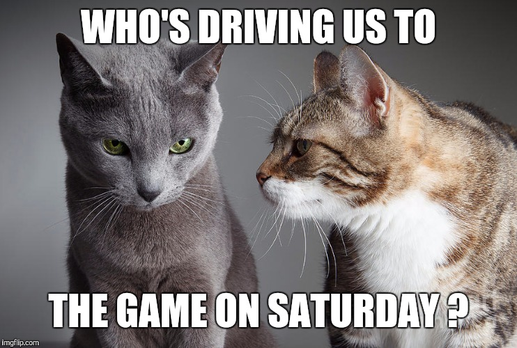 You Didn't Share ?!?! | WHO'S DRIVING US TO THE GAME ON SATURDAY ? | image tagged in you didn't share | made w/ Imgflip meme maker