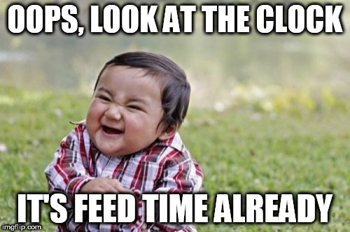 Evil Toddler Meme | OOPS, LOOK AT THE CLOCK IT'S FEED TIME ALREADY | image tagged in memes,evil toddler | made w/ Imgflip meme maker