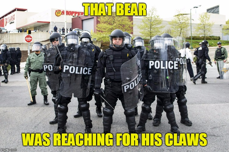 THAT BEAR WAS REACHING FOR HIS CLAWS | made w/ Imgflip meme maker